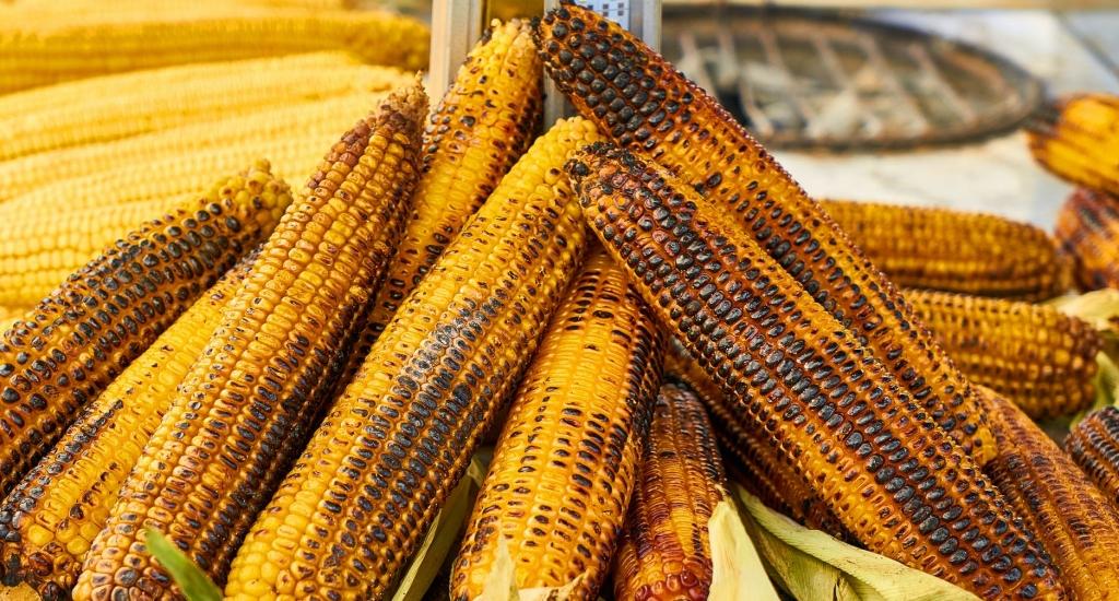 pile of roasted corn