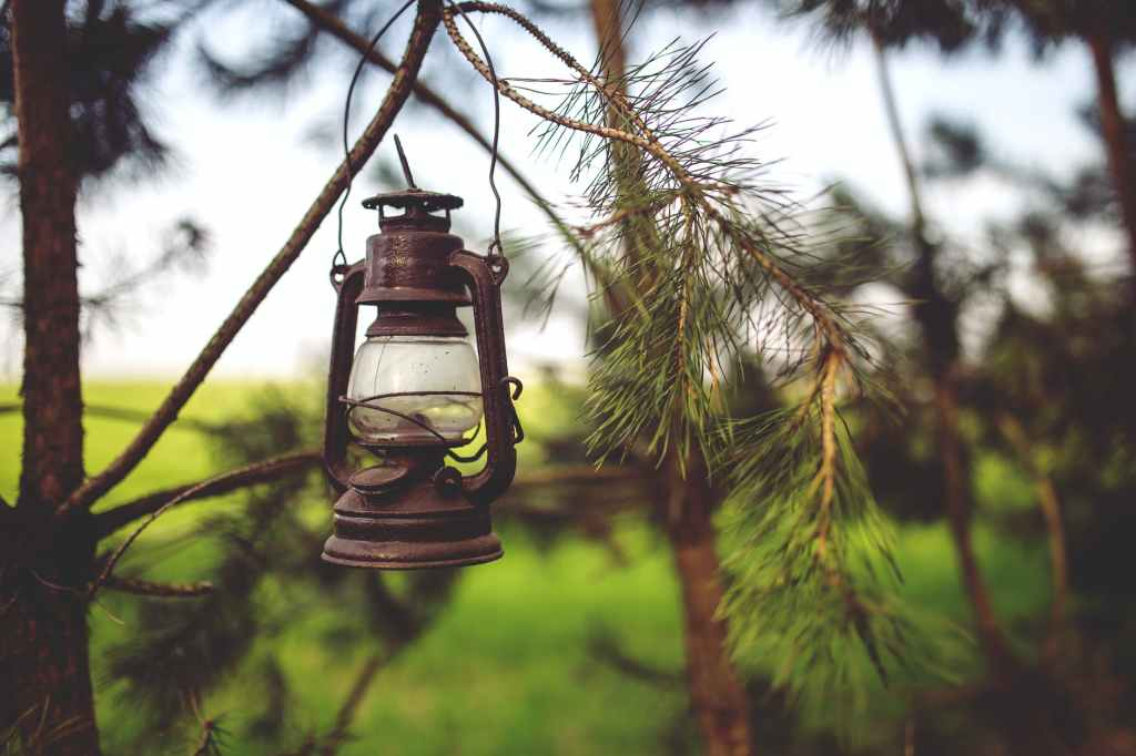an old kerosene lamp hanging from a tree branch