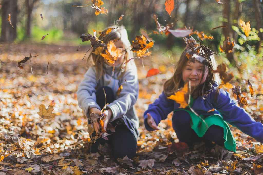 two girls playing in the autumn  leaves