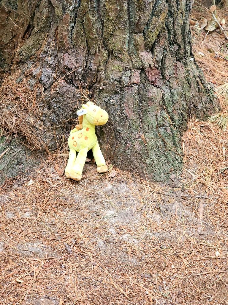 a stuffed giraffe doll left by a tree