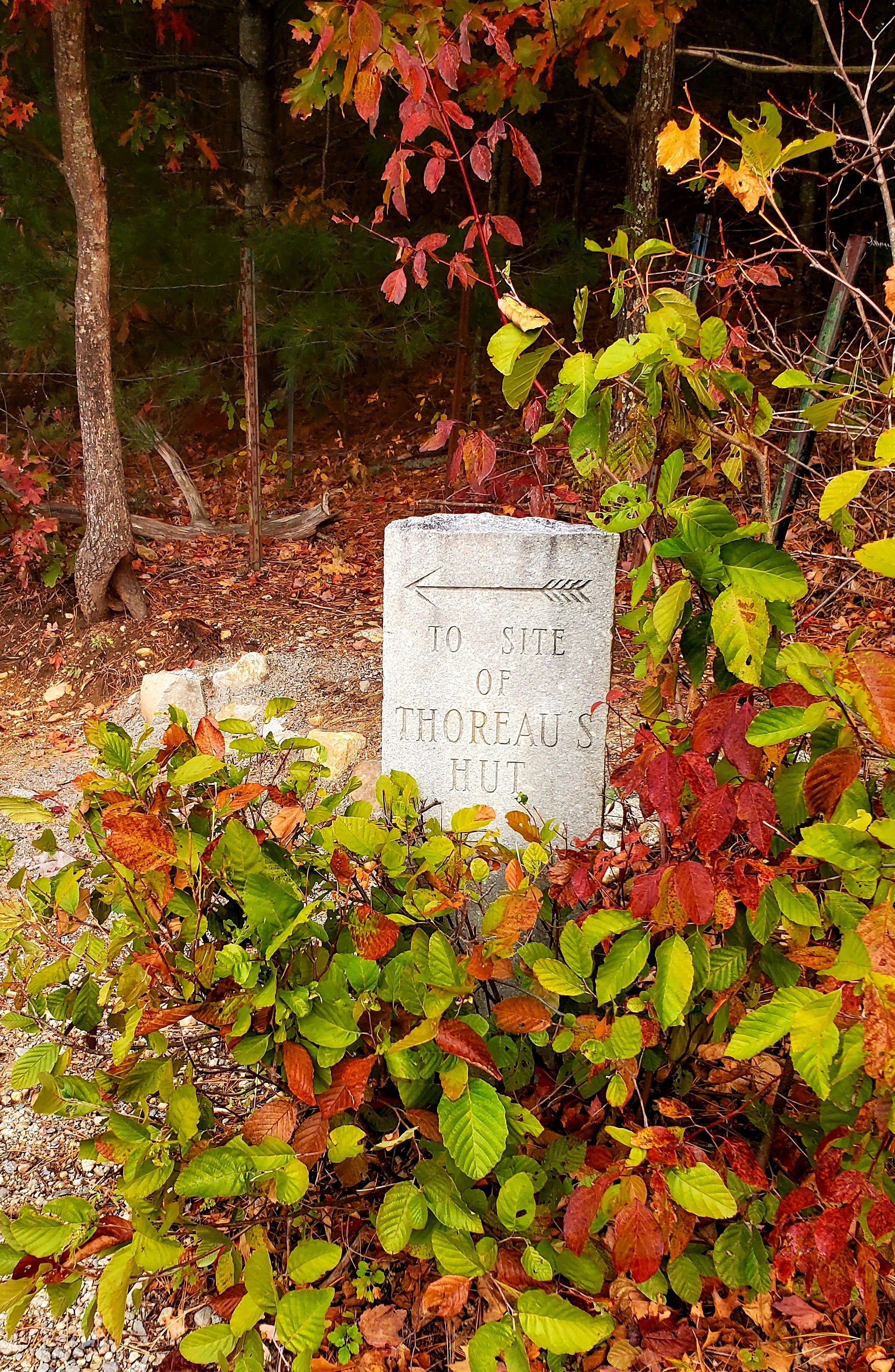 granite sign for Thoreau's hut
