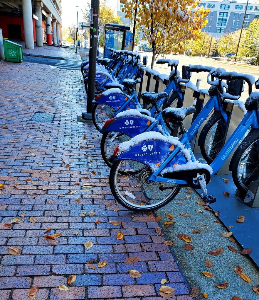 Line up of blue rental bikes