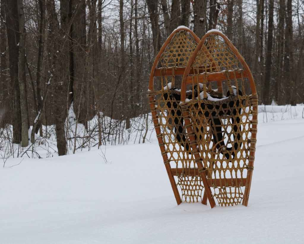 snowshoes standing up in the snow