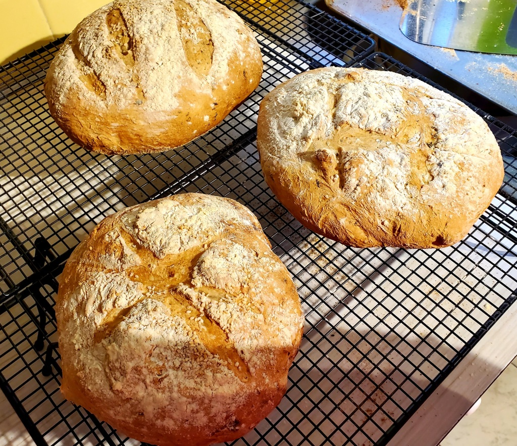 3 loaves of bread browned from the oven