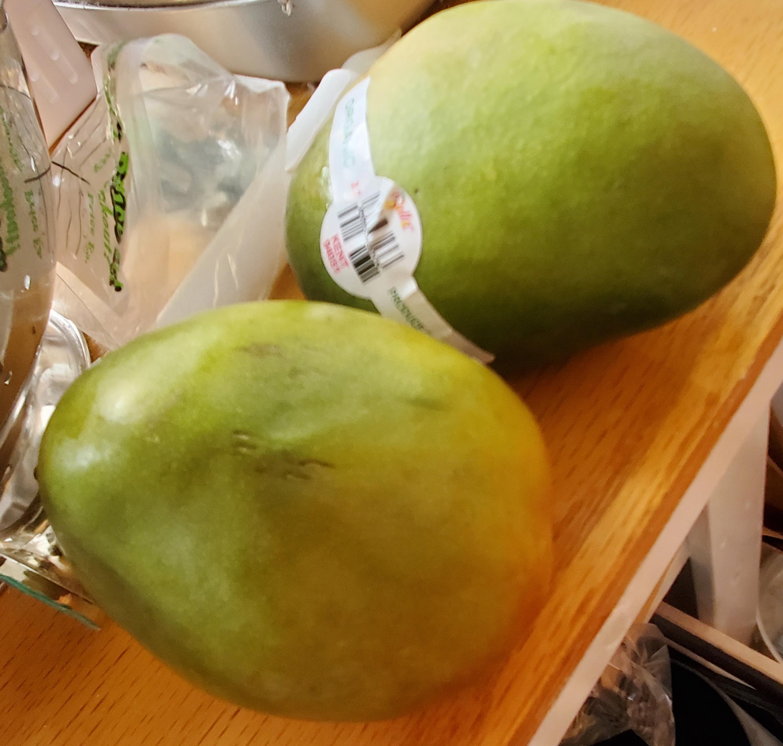 Two green Kent Mangos